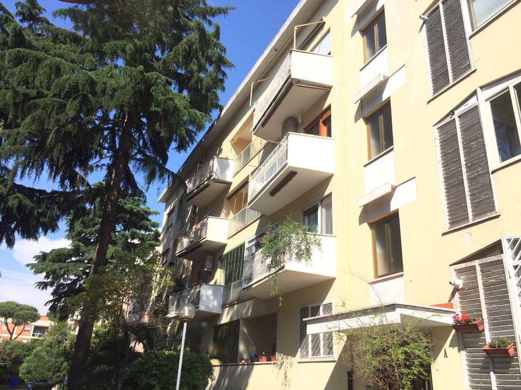CECCHIGNOLA -  Appartamento 3 locali T347