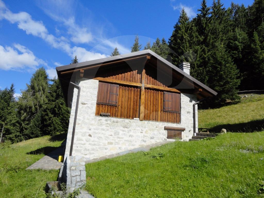 Ponte di legno baita nel bosco in vendita for Ponte intorno alla casa