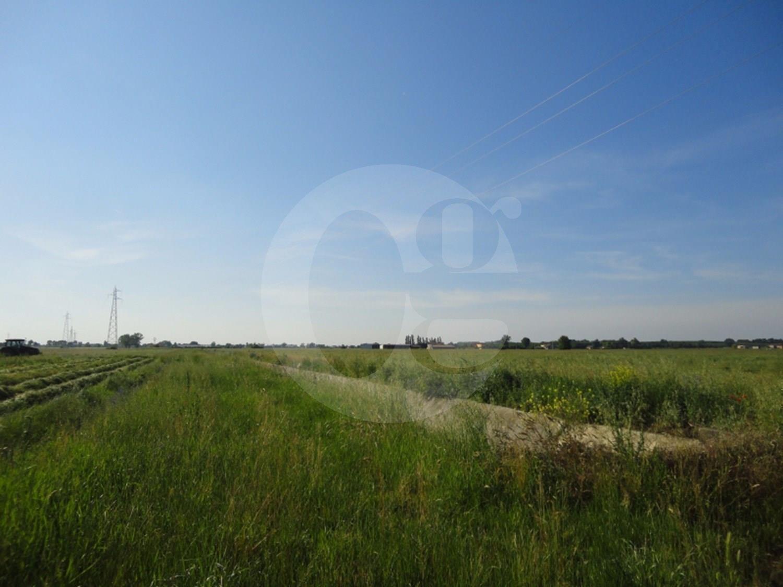 Busseto appezzamenti di terreni in vendita