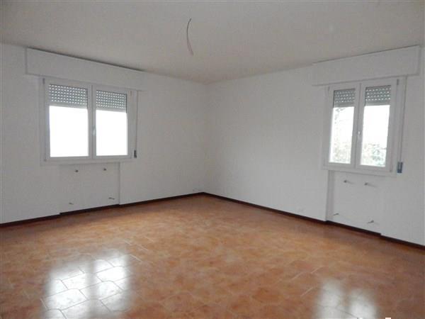 Laboratorio in affitto a Novi di Modena, 4 locali, prezzo € 1.200 | CambioCasa.it