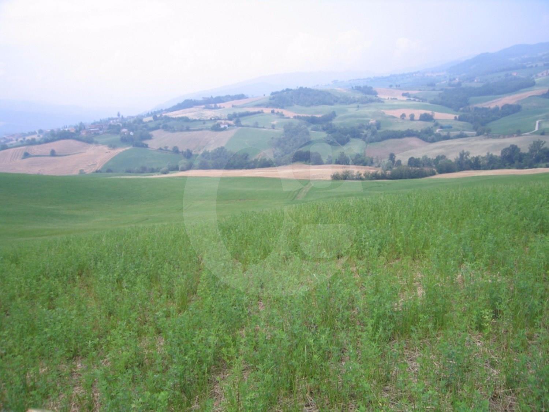 Azienda agricola a Langhirano nel parmense in vendita