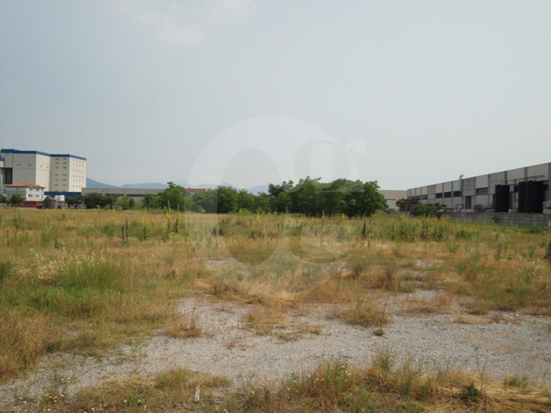Montichiari terreno industriale in vendita