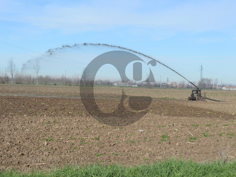 Aziendina agricola di 20 piò provincia Cremona