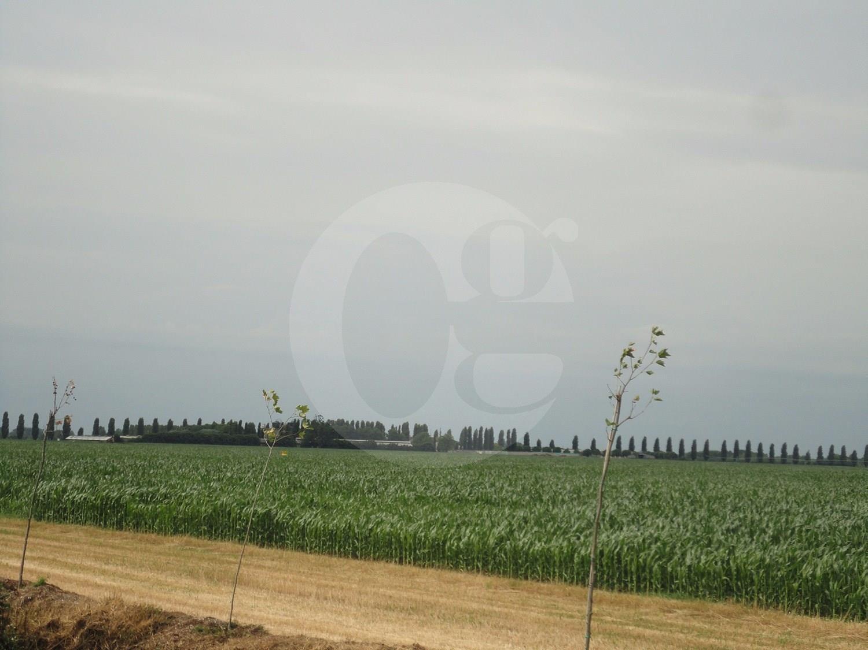 Azienda Agricola in vendita a Cremona, 9 locali, Trattative riservate | CambioCasa.it