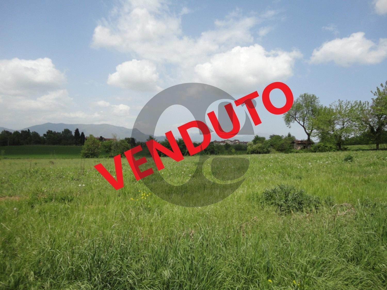 Calvagese della Riviera terreno agricolo in vendita