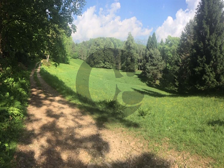 Azienda Agricola in vendita a Recoaro Terme, 6 locali, prezzo € 400.000 | CambioCasa.it