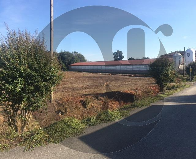 Azienda Agricola in vendita a Cremona, 9 locali, prezzo € 700.000 | CambioCasa.it