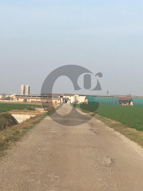 In Emilia azienda agricola con caseificio in vendita