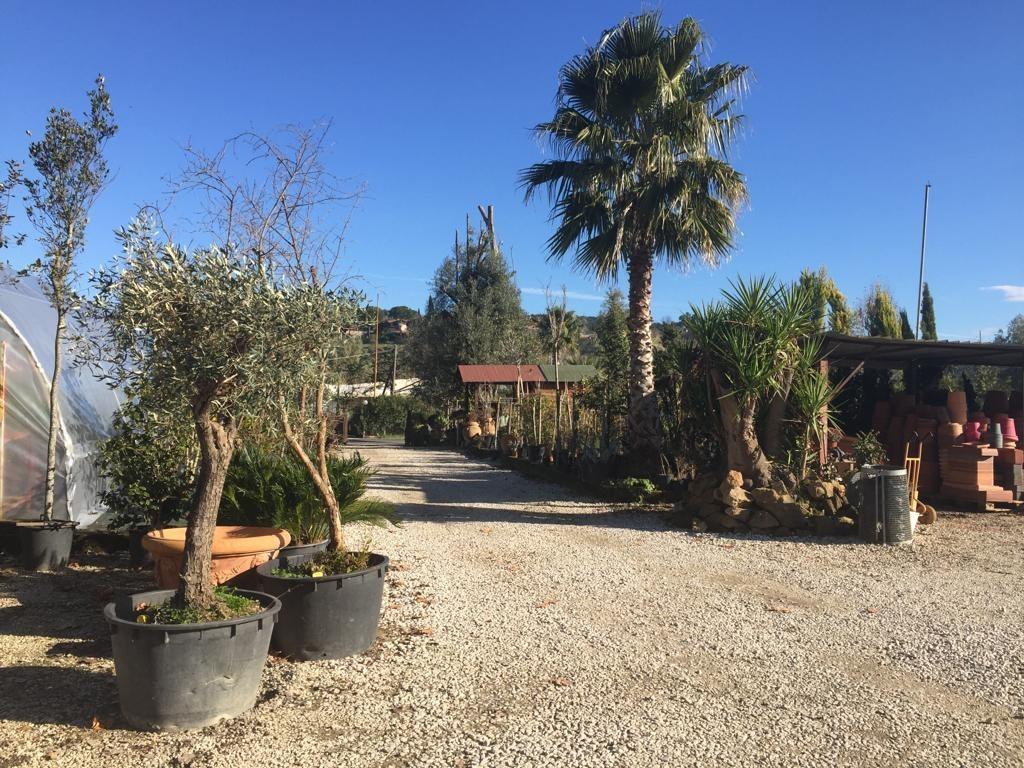 Villa in vendita a Roma, 1 locali, zona Zona: 34 . Bufalotta, Sette Bagni, Casal Boccone, Casale Monastero, Settecamini, prezzo € 650.000 | CambioCasa.it