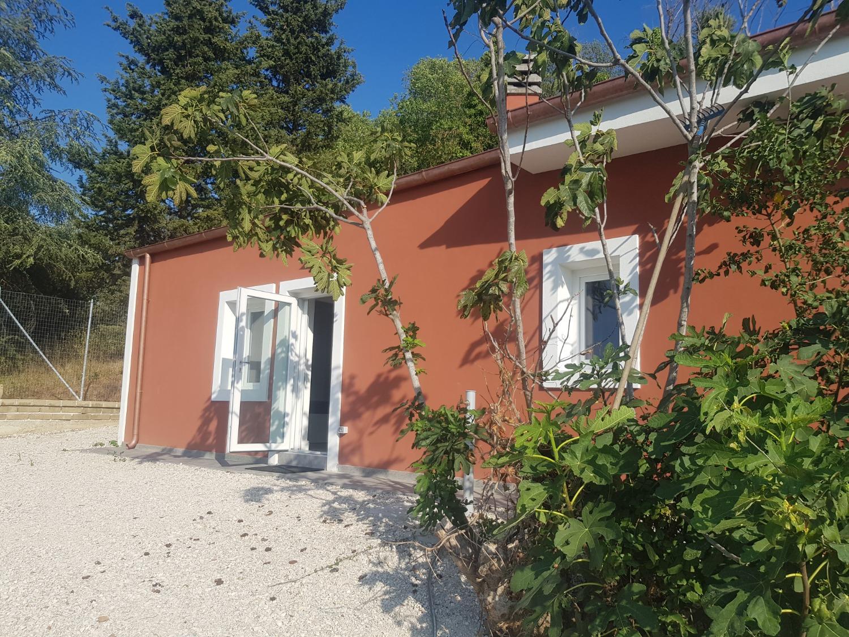 Grottaferrata -   3 locali  € 800,00 - A304