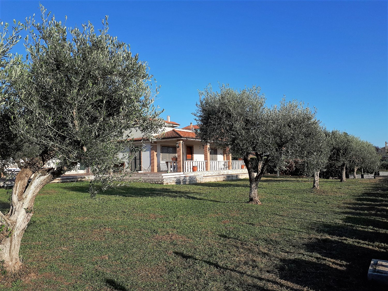 Villa in Vendita a Albano Laziale