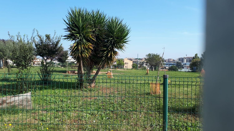 Appartamento in vendita a Roma, 4 locali, zona Zona: 11 . Centocelle, Alessandrino, Collatino, Prenestina, Villa Giordani, prezzo € 259.000 | CambioCasa.it